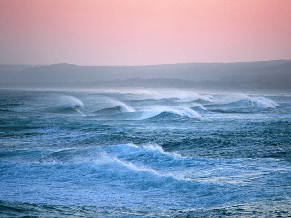 Стоишь на берегу и чувствуешь солёный запах ветра, что веет с моря.  И веришь, что ты свободен, и жизнь лишь началась.